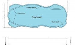 savannah_r03_b